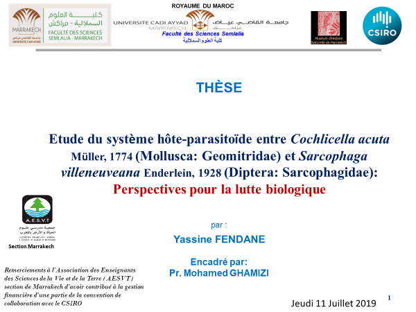 diplome-these-yassine-fendane