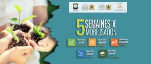 programme d'actions locales écocitoyennes